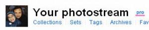 Akun Pro Flickr saya